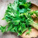 raw papaya salad recipe