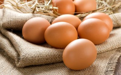 What about eggs health benefits